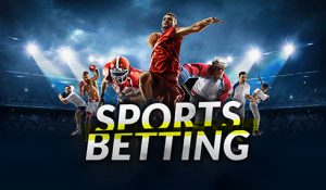 Variety of Online Sportsbook Betting Suitable for Beginners